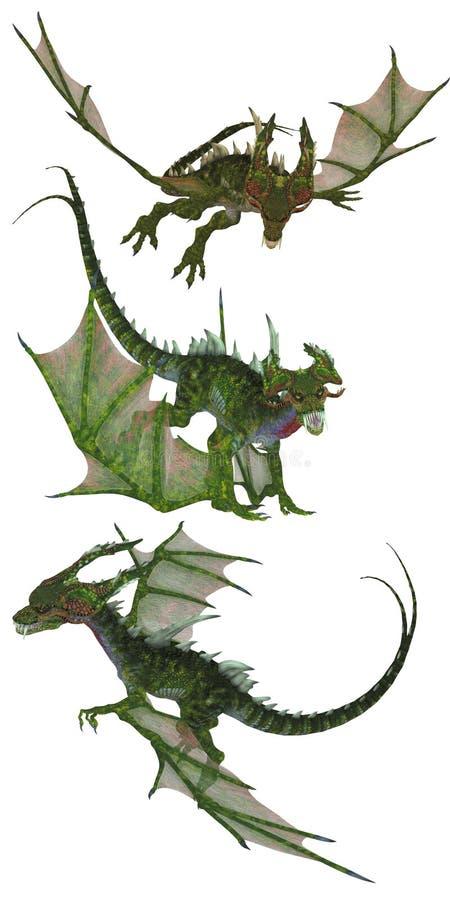 Green dragons
