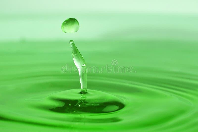 Green drop royalty free stock photo