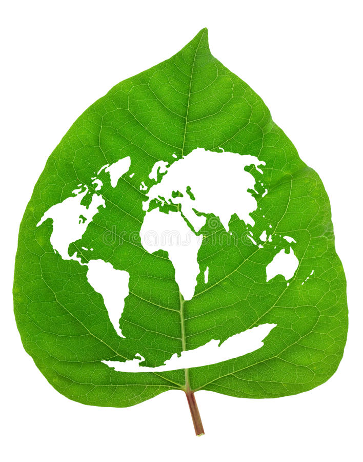 Green Earth map. Concept from real leaf isolated royalty free stock photo