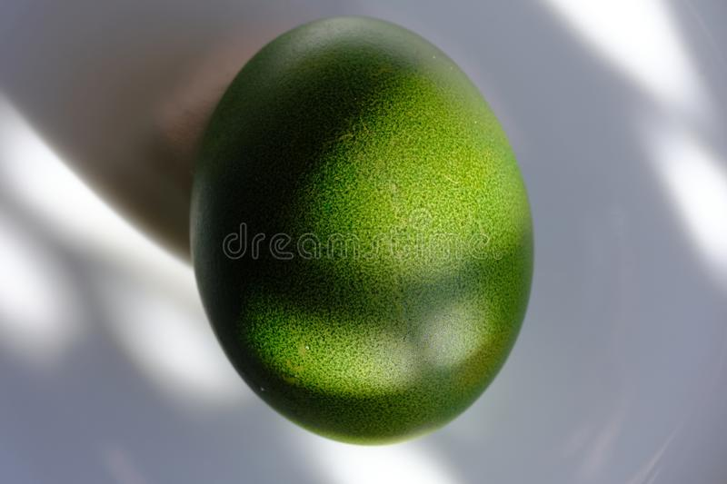 Green Easter egg on a white platter. A ray of sun shining on the egg. High resolution closeup macro royalty free stock image