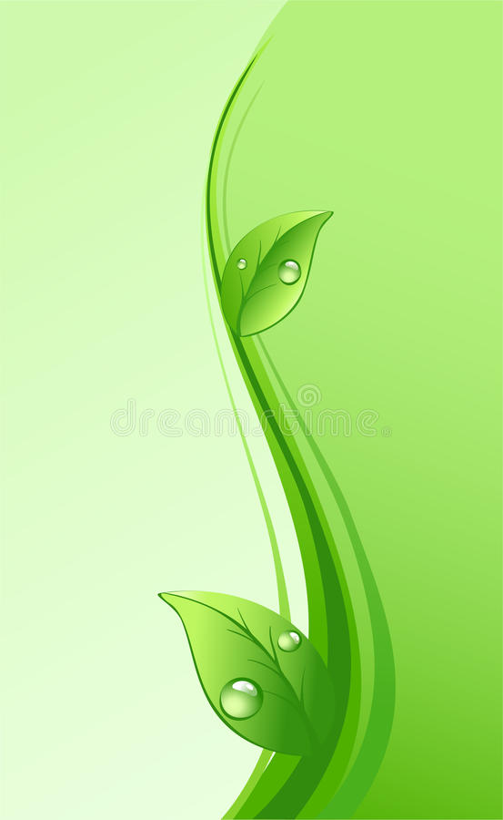 Green eco background. With leaves and drops royalty free illustration
