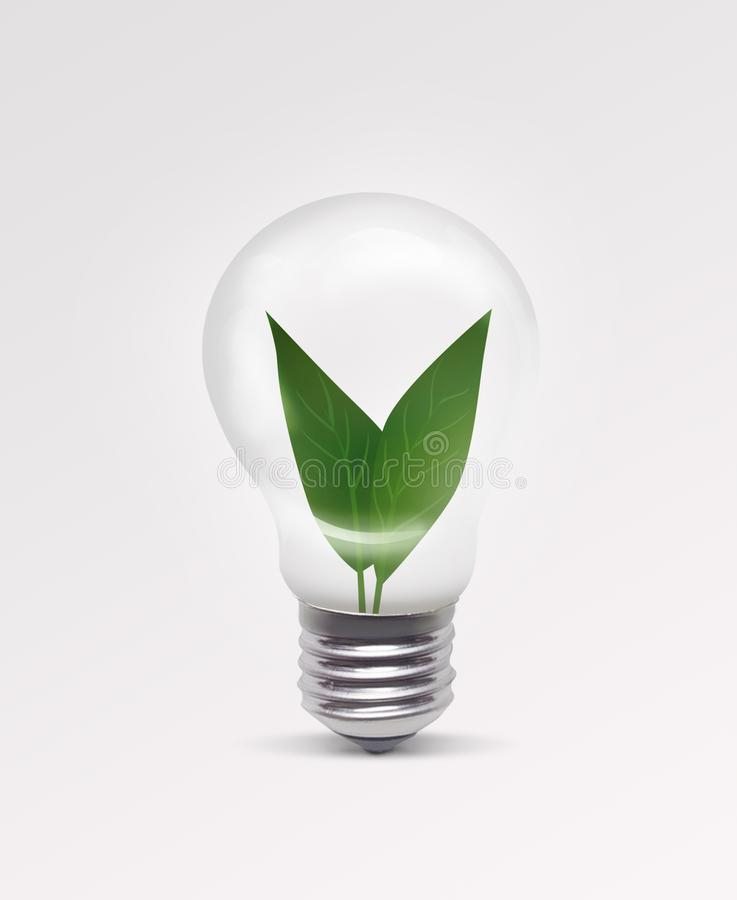 Young plant growing inside the light bulb royalty free stock photo