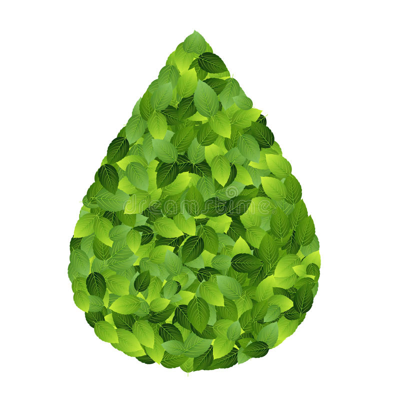 Download Green Eco Friendly Label From Green Leaves. Vector Stock Photography - Image: 28884222