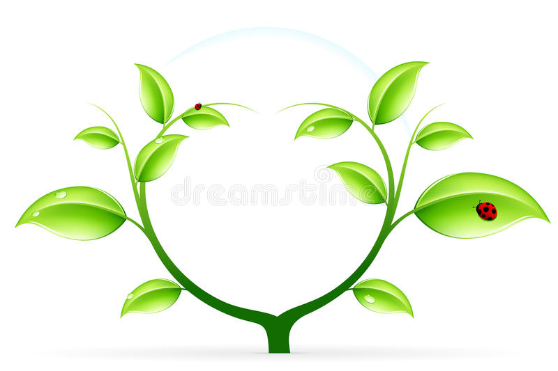 Green ecology stock photo