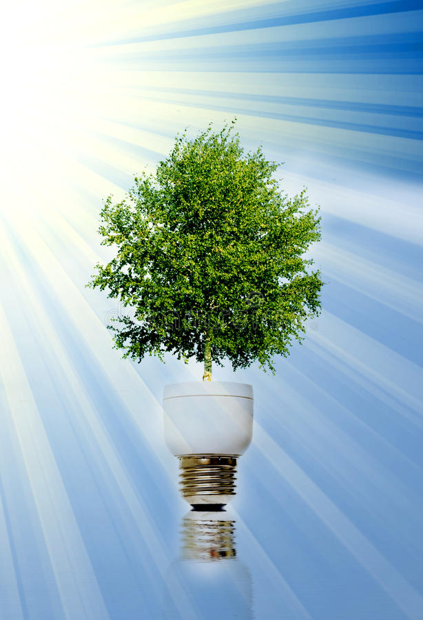 Green energy. Tree in light bulb symbolizing green energy stock images
