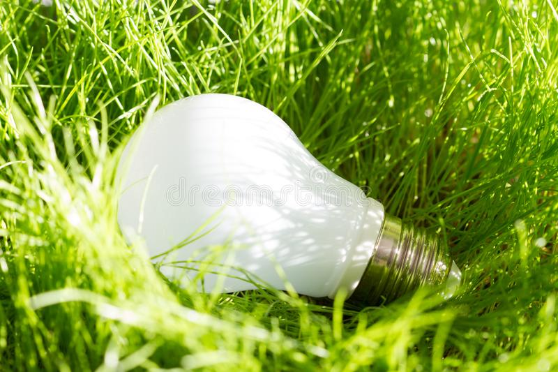 Green energy concept with bulb in the grass outdoor. Closeup royalty free stock photography
