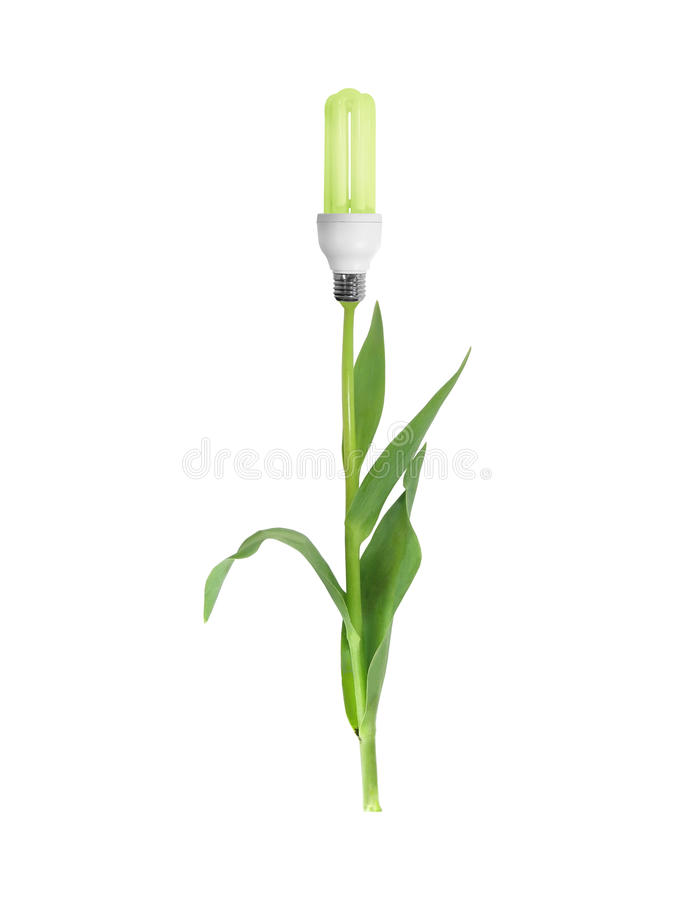 Green Energy Flower Royalty Free Stock Image