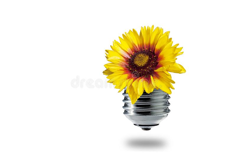 green energy for flowers royalty free stock photography