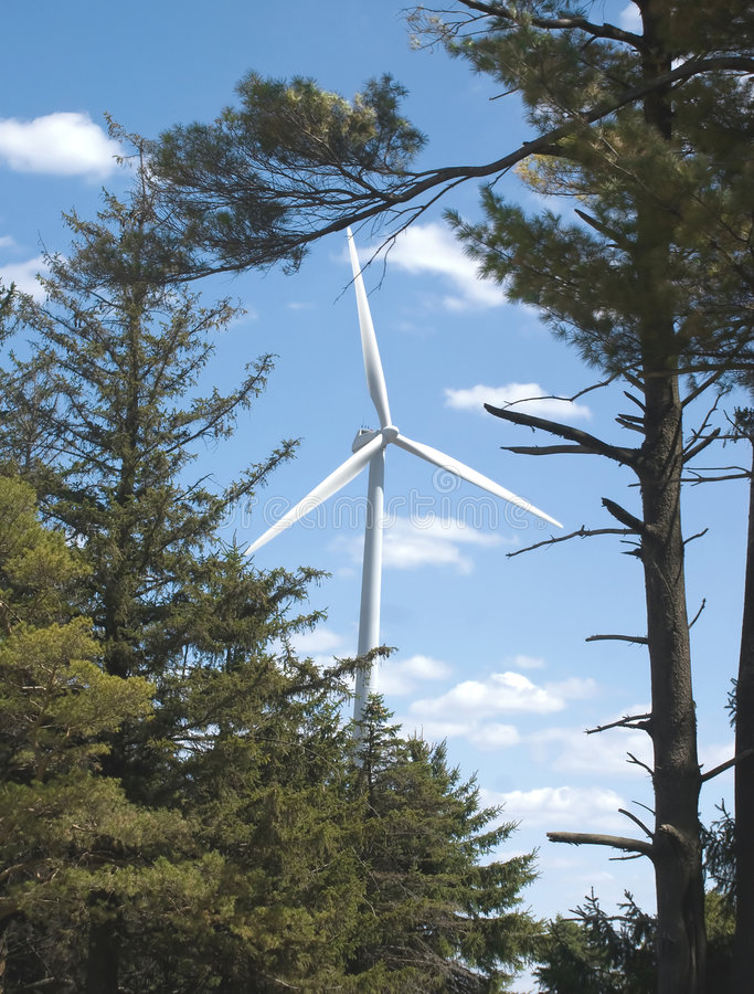 Green Energy Forever. A view of a Wind Mill through trees just outside Rochester, Minnesota. The theme of the picture is Green Energy Forever so the windmill is stock photos