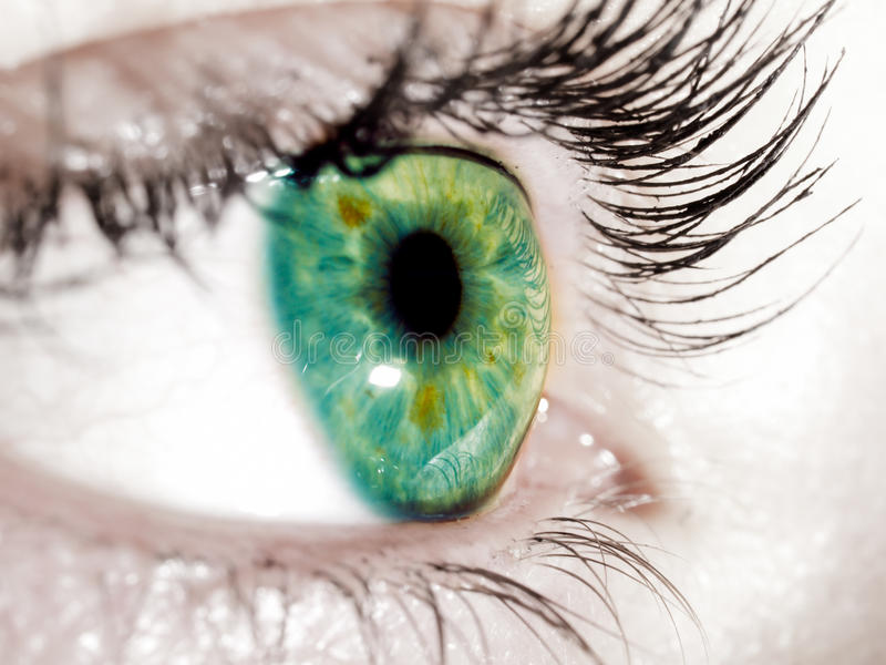 Green eye. Picture with very green eye looking far away, simple blue and green, sharp and beautiful eyes, women eye, iris
