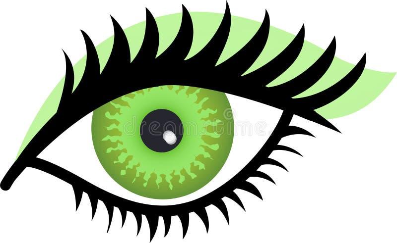 Green Eye. Stylized Illustration of a woman's green eye with green eye shadow vector illustration