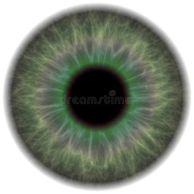 Green Eye Iris. A highly detailed iris section of the human eye. This works great for eye repairs in portrait retouching or red eye removal vector illustration