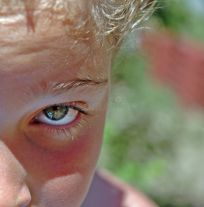 Download Green eyes stock photo. Image of young, eyes, half, glimpse - 5644
