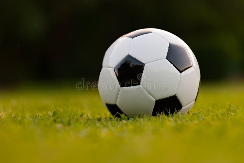 green för fotboll för bollfält arkivbild
