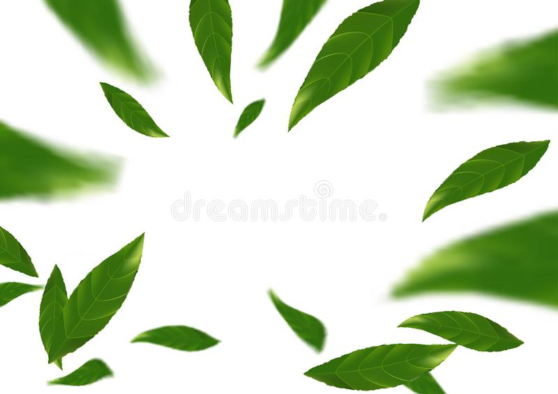 Green falling tree leaves abstract modern background layout. Spring fresh leaf fly natural beauty design concept. Vector illustration stock illustration