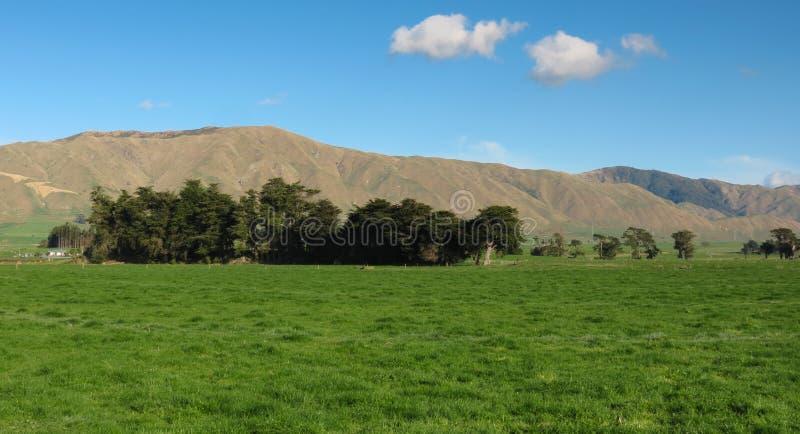 Green Farm Land Royalty Free Stock Photography