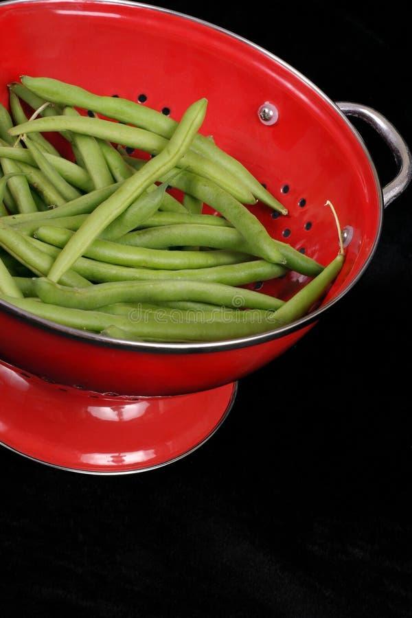 Green Fasoli Zdjęcie Stock