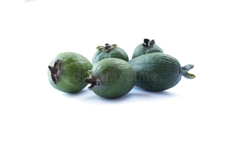 Green feijoa fruits isolated on white background. Feijoa fruits on white. royalty free stock photos