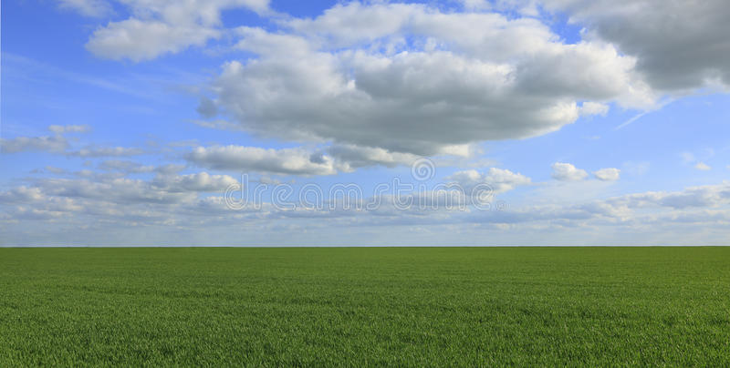 Download Green field stock image. Image of clouds, beauty, background - 14584119