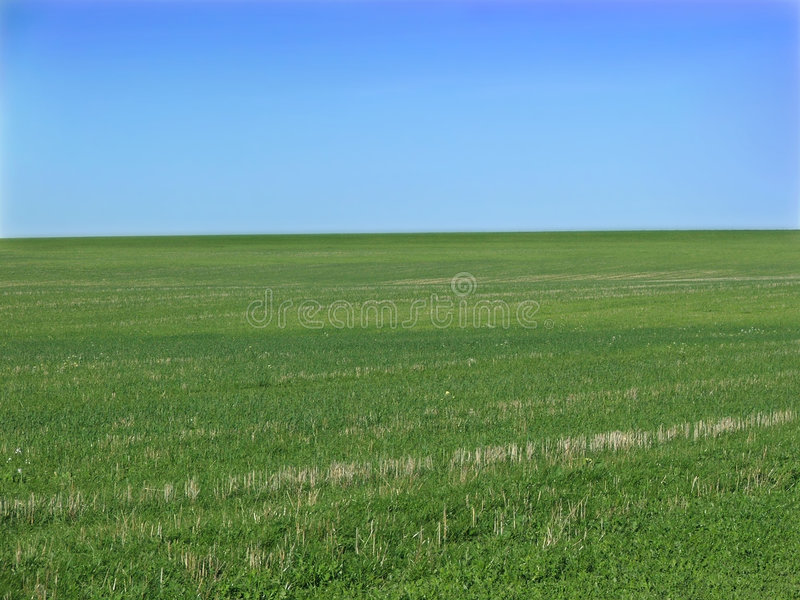 Download Green field stock image. Image of grassy, outdoor, open - 164091