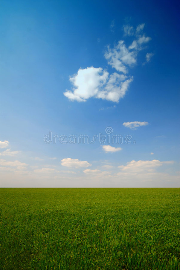 Download Green Field Royalty Free Stock Photo - Image: 2252535
