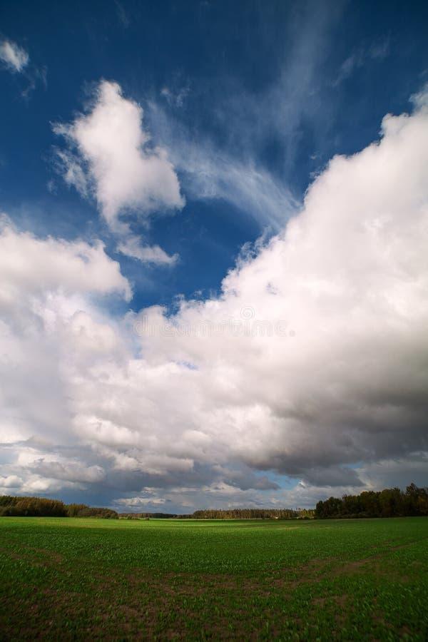 Download Green field. stock image. Image of cloud, rural, landscape - 28742733