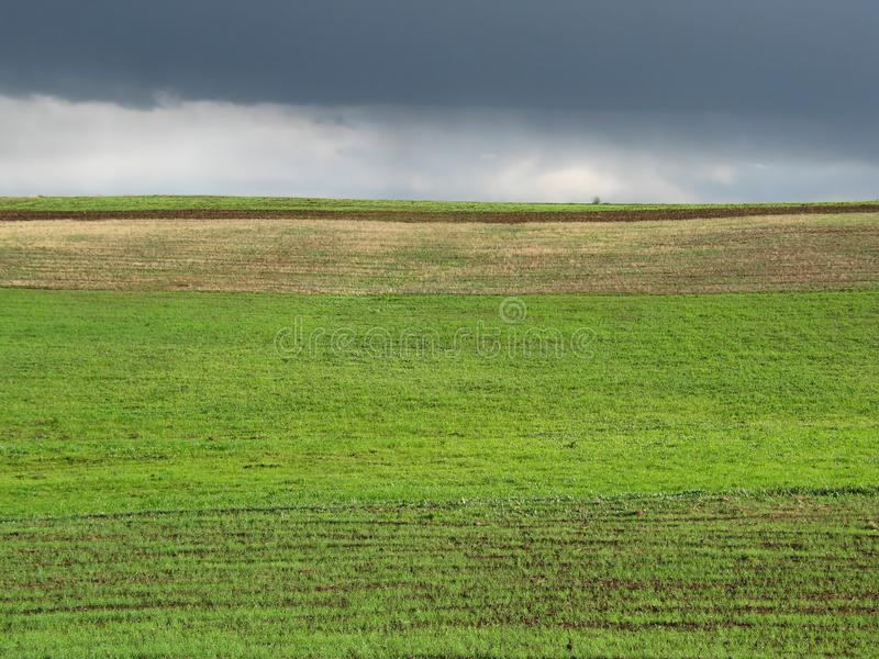 Download Green field stock image. Image of dark, seasonal, rain - 5492221