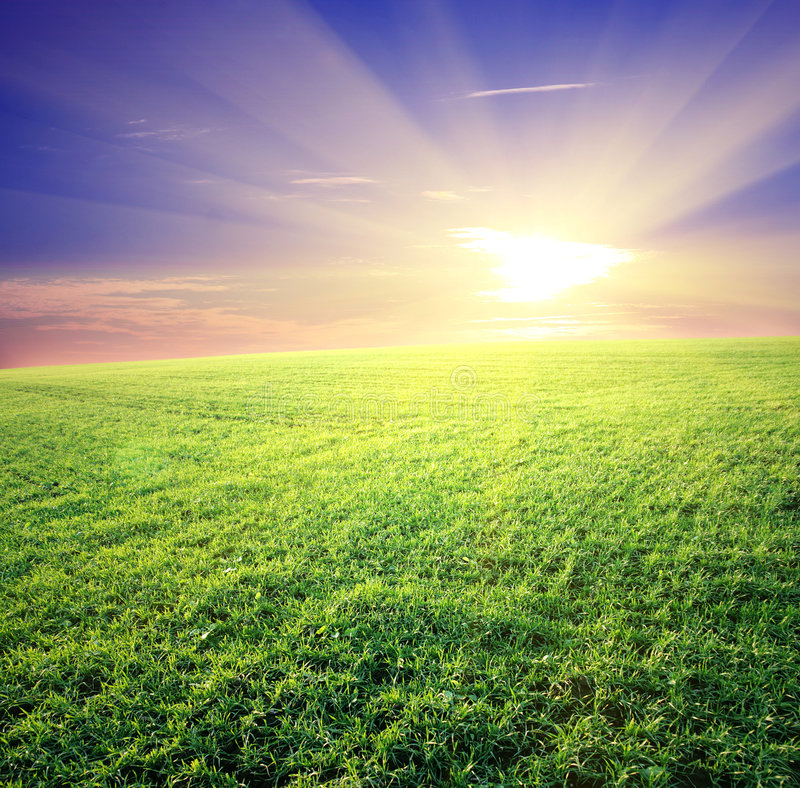 Free Green Field And Beautiful Sunset Royalty Free Stock Image - 8518016