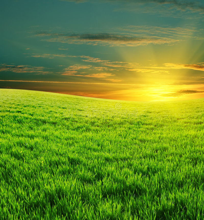 Free Green Field And Beautiful Sunset Royalty Free Stock Photo - 9334745