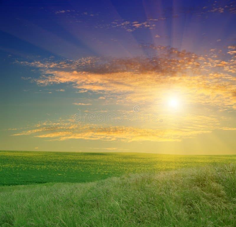 Free Green Field And Beautiful Sunset Stock Photo - 9335720