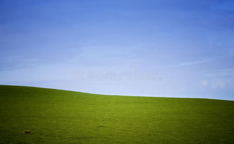 Green Field Background. Lush green field under blue sky royalty free stock photos