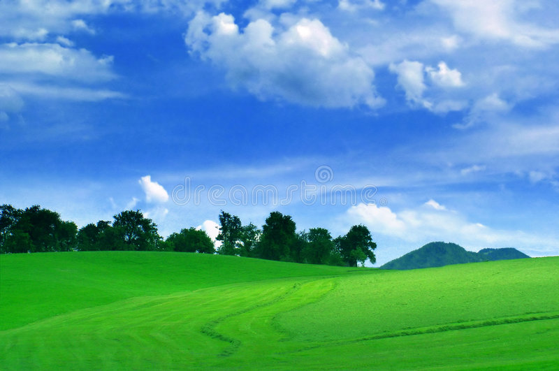 Green field on a beautiful day royalty free stock photos