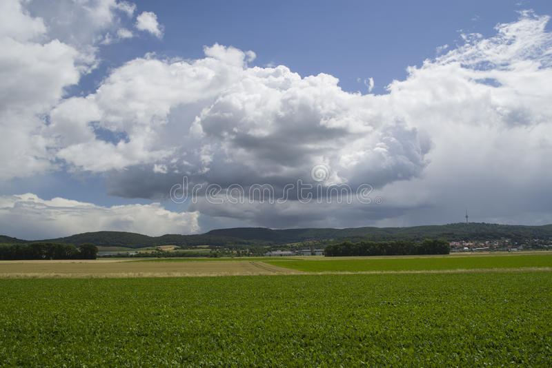 Green field and blue cloudy sky royalty free stock photo