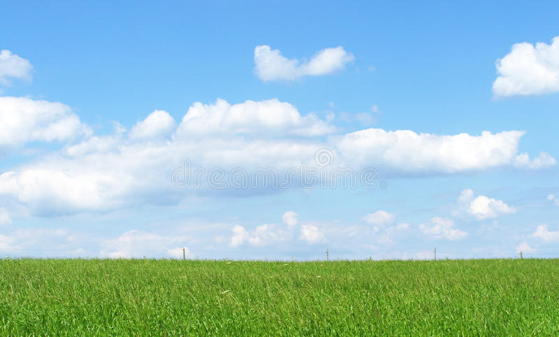 Green field blue sky. Large green field topped with cumulus clouds in a blue sky stock photos
