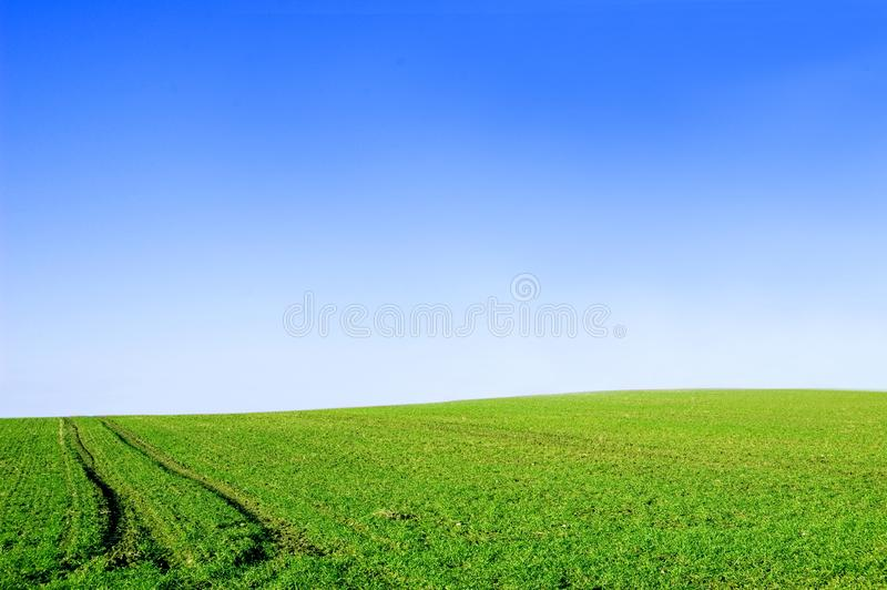 Green field and blue sky conceptual image. stock photos