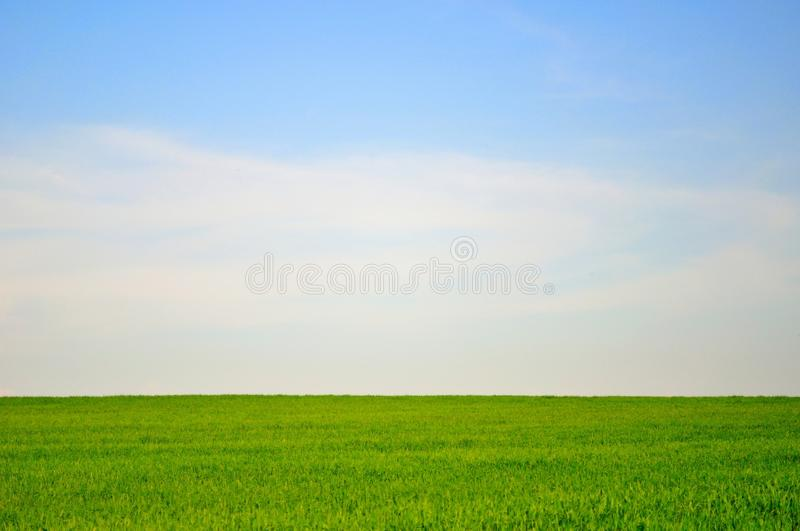 Green field and blue sky landscape background stock photos