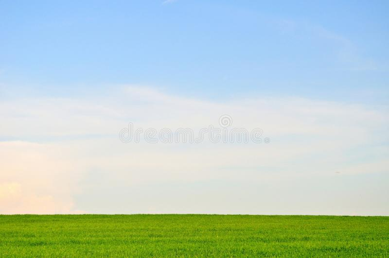 Green field and blue sky landscape background stock photography