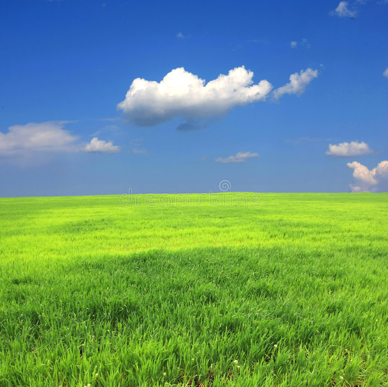 Download Green Field And Clouds In Sky Stock Photo - Image: 9344802