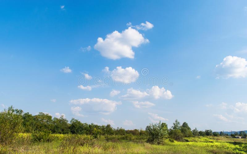 Green field with grass and some trees. A beautiful blue sky with clouds on a summer day in August stock photo
