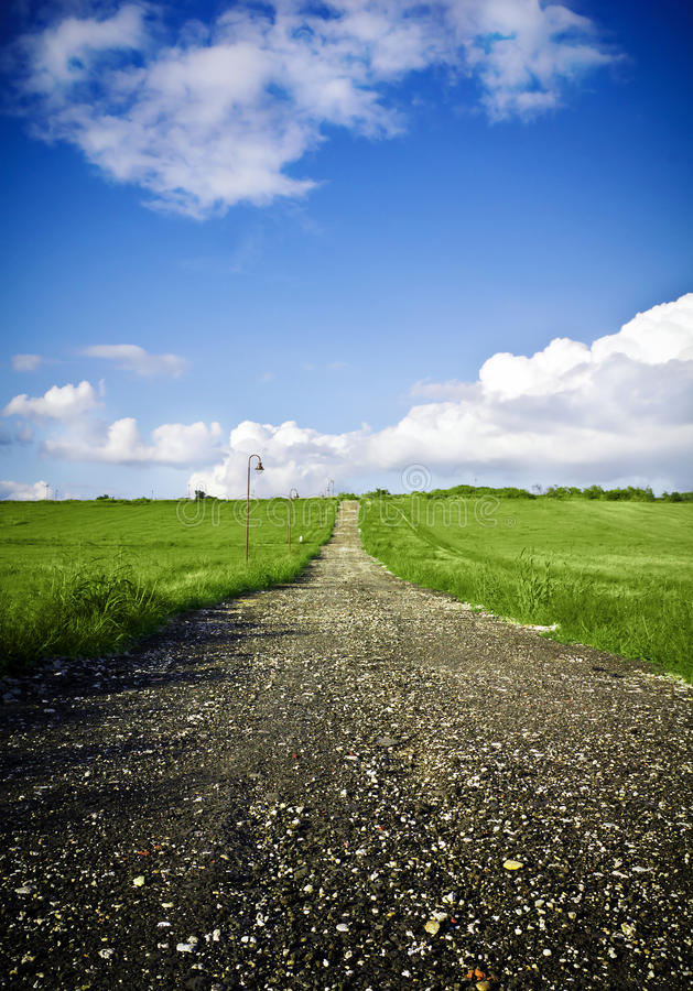 Green field Landscape. Vertical Green field Landscape with country road stock photography