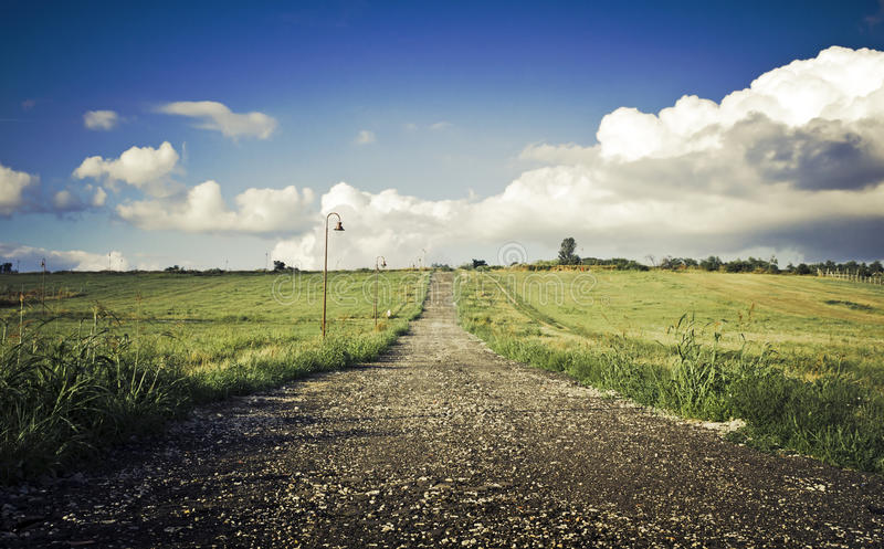 Green field Landscape. With country road royalty free stock photography