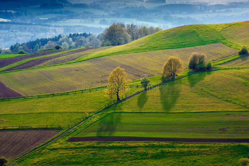 Green field royalty free stock images