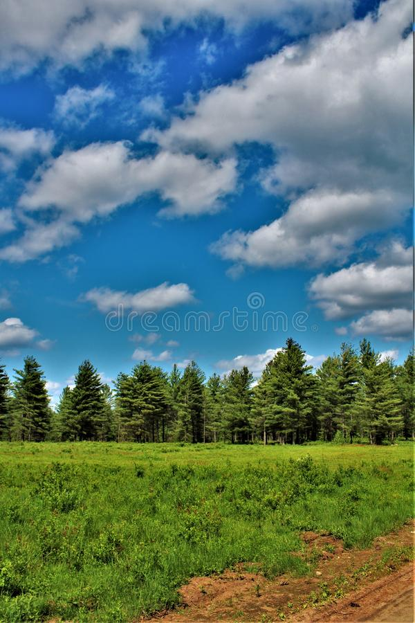 Green field located in Childwold, New York, United States. Green field of grass located in Childwold, New York, United States in the Adirondack Mountains stock photo