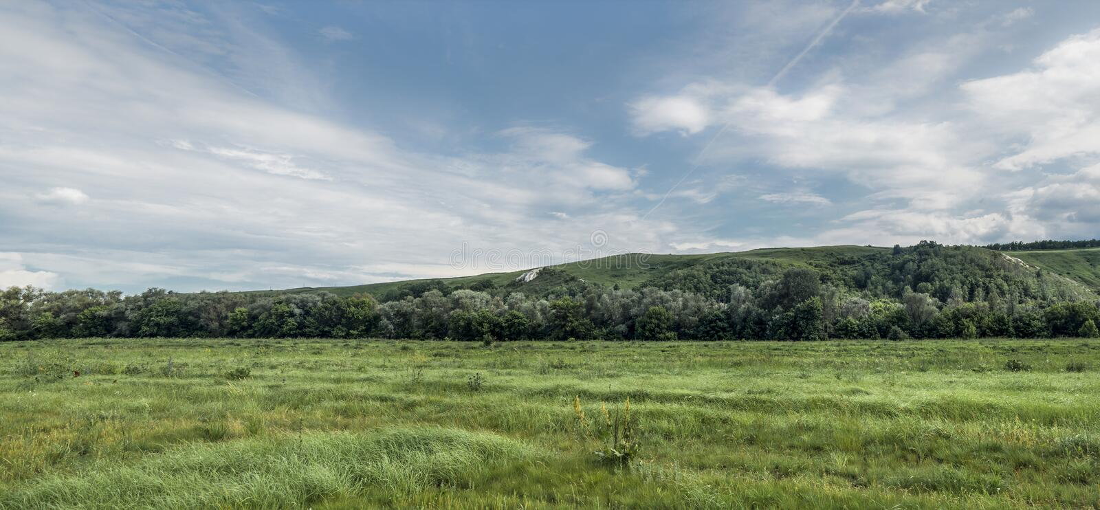 Green field panorama royalty free stock images