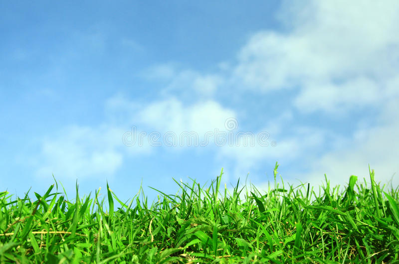 Green Field And Sky Blue With White Cloud Royalty Free Stock Photo
