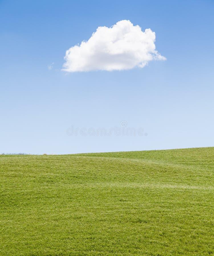 Green field in Tuscany
