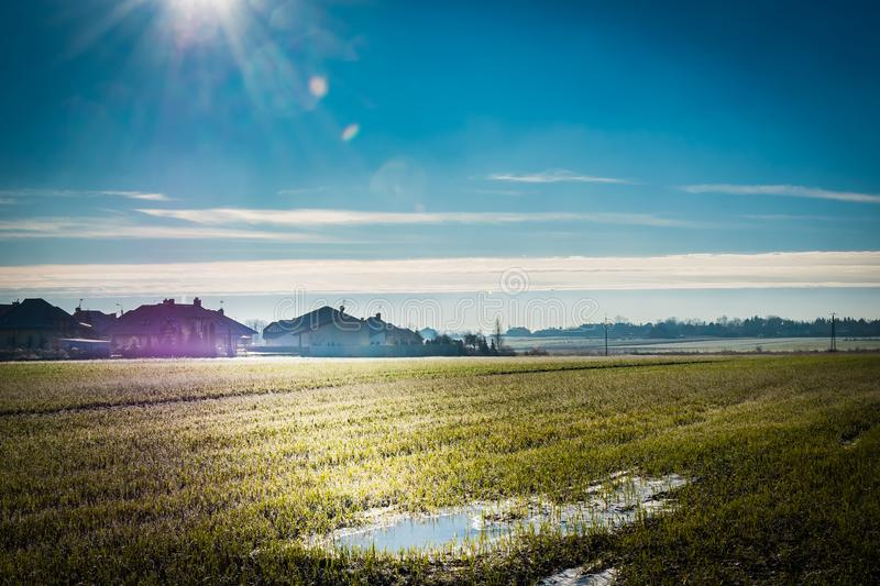 A green field during winter to spring transition, with frozen wa royalty free stock photos