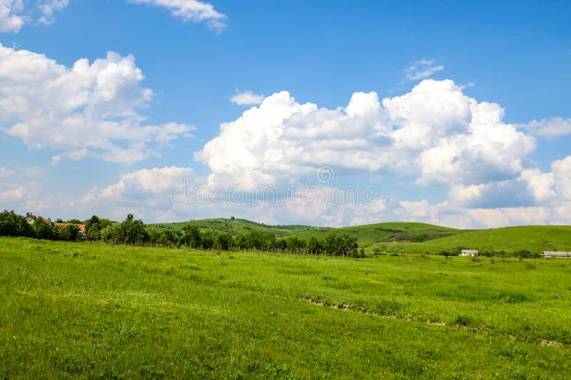Green fields on the background of mountains and blue sky with white clouds stock image
