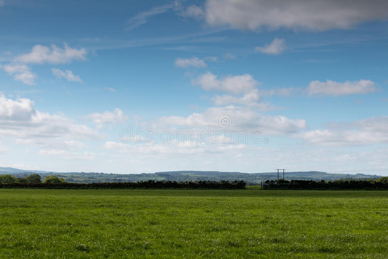 Green fields with blue cloudy skies. In the countryside royalty free stock image