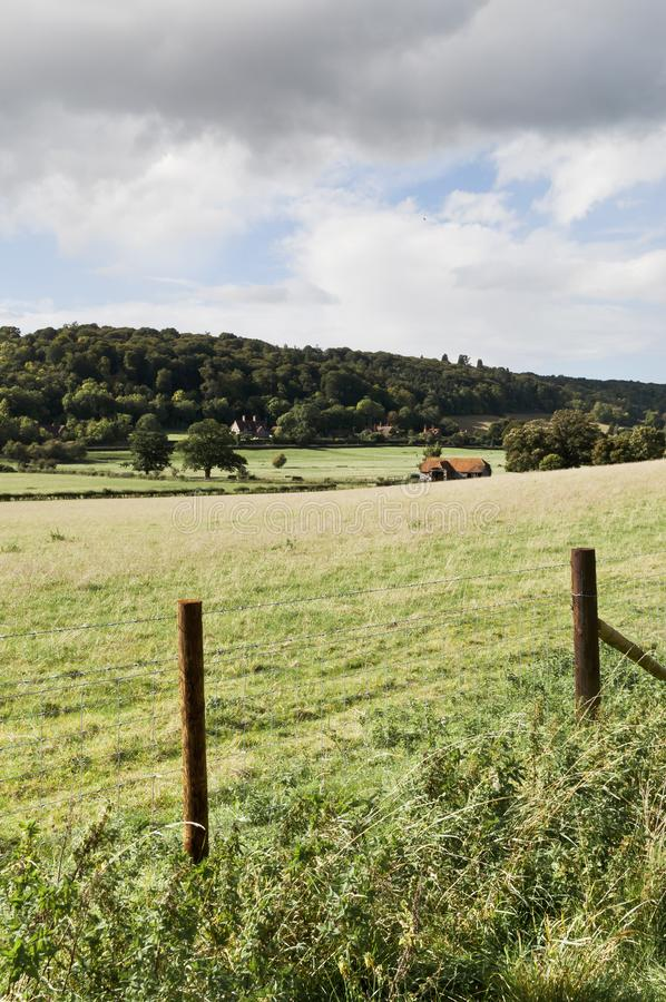 Green fields in British countryside. UK stock photo